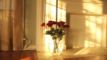 Bunga Kesayangan Ibu
