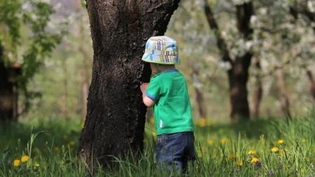 pohon dan anak - Outbound Lembang